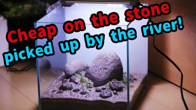 河原の石で水槽レイアウト!水槽の石は拾いものでもOK!?川の石も案外いける!